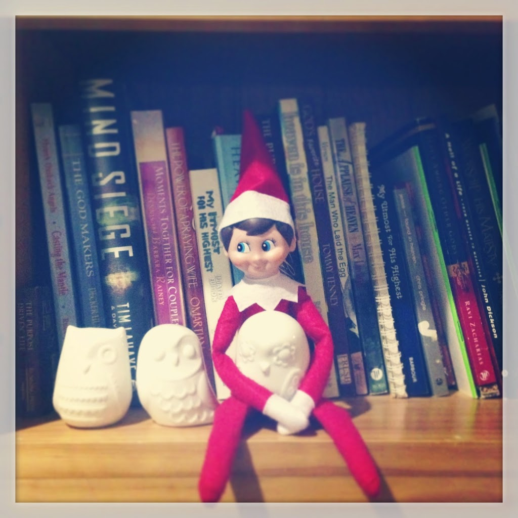 Elf on the Shelf with owl
